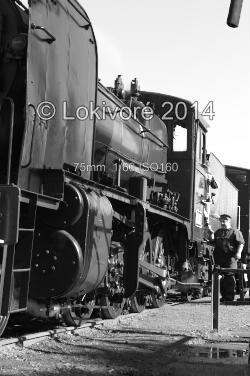 steam train and driver